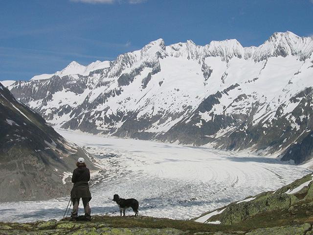 Camping mit Hund Schweiz Berge Wanderung