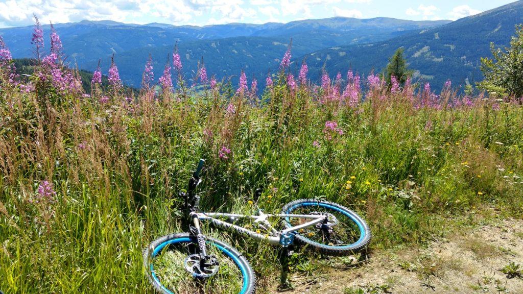 Mountainbiken liegend in einer Blumenwiese vor Bergpanorama