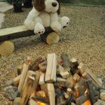 Hund am Lagerfeuer
