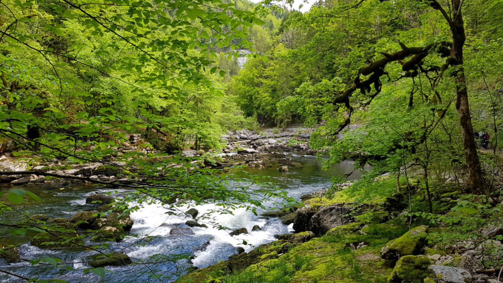 Wanderung entlang Doubs