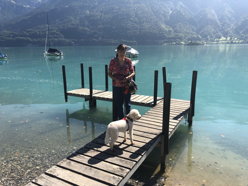Badestrand Camping Au Lac